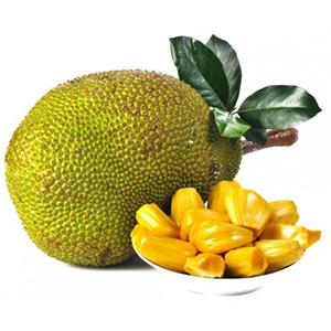 jackfruit_1585651412.jpg